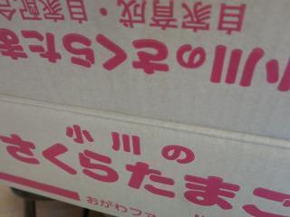 320_k151028 (3).JPG